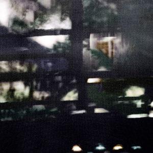 La vie cachée, 2014, impression à jet d'encre pigmentaire, 60 x 90 cm.